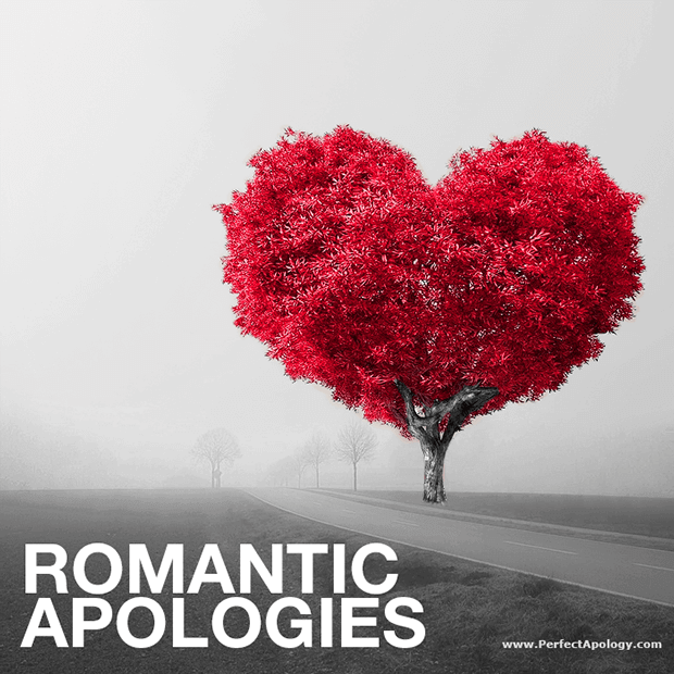 perfect romantic apologies adding romance saying sorry