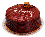 Decorated chocolate cake with I'm sorry piped in icing