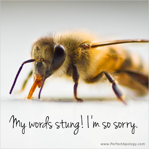 Image of a bee - My words stung, I'm sorry