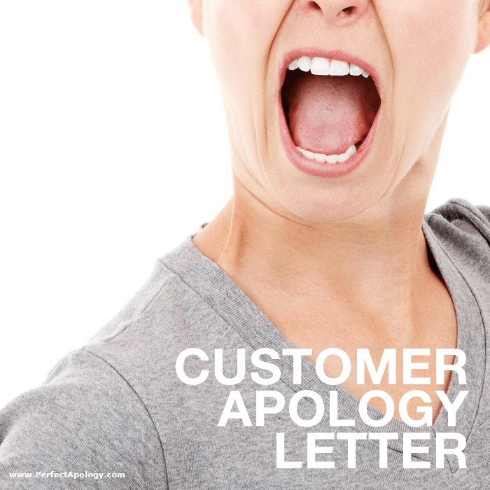 Customer apology letter the perfect apology a customer service complaint scenario spiritdancerdesigns Images