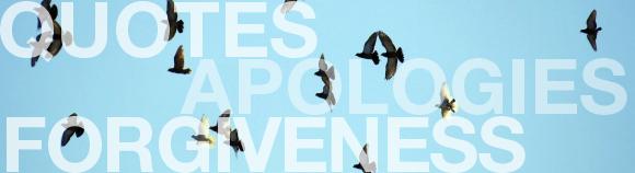 Birds soaring in sky