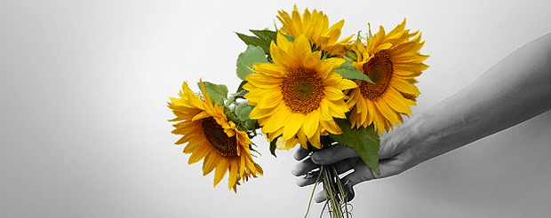 Outstretched arm holding a bouquet of sunflowers